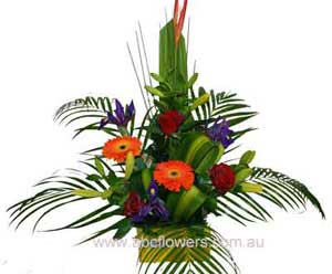 ABC Flowers Deliver A010 Melbourne Wide Free Delivery Melbourne Inner Suburbs