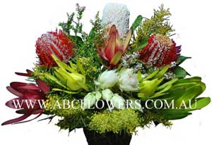 ABC Flowers Fitzroy St. Vincent's Hospital Melbourne Deliver A019 Native Flower Arrangement Melbourne Wide Free Delivery Melbourne Suburbs