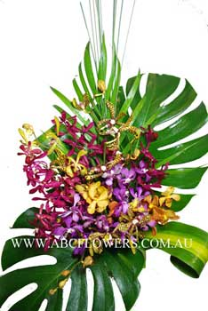 ABC Flowers St. Vincent's Hospital Deliver A021 Colorful Orchids Arrangement Melbourne Wide Free Delivery Melbourne Inner Suburbs