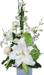 A026 Moonee Ponds- A box arrangement with white lilies, roses, orchid and anthuriums