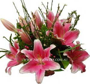 ABC Flowers St. Vincent's Hospital Melbourne Deliver A027 Premium Oriental Lilies Box Arrangement Melbourne Wide Free Melbourne Inner Suburbs Delivery