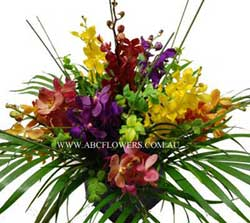 ABC Flowers Deliver A028 QV-Centre Piece Arrangement of Orchids Melbourne Wide Free Delivery Melbourne Inner Suburbs