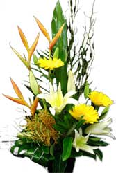 ABC Flowers St. Vincent's Hospital Deliver A031 Princess Hill Bird of Paradise lilies and gerberas flower arrangement melbourne wide free delivery to all melbourne inner suburbs