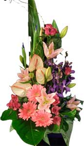 ABC Flowers St. Vincent's Hosptial Melbourne Deliver A033 Northcote A tall ceremic flowers arrangement melbourne wide free delivery to all melbourne inner suburbs
