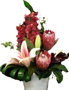 ABC Flowers St. Vincent's Hospital Fitzroy Melbourne Deliver A035 Fairfield box arrangement of long lasting flowers melbourne wide free delivery all melbourne inner suburbs