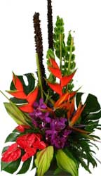 ABC Flowers St. Vincent's Hospital Fitzroy Melbourne Deliver A036 A luxury tropical flower arrangement melbourne wide free delivery melbourne inner suburbs