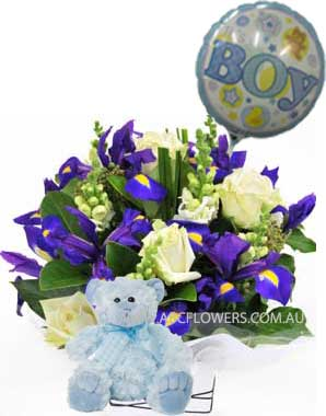 A044 Frances Perry Baby Boy Gift Pack of irises, roses, and other seasonal flowers with Teddy Bear, and Balloon delivery melbourne wide