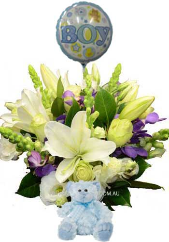 A046 Freemasons - Baby Boy Gift Pack of white flowers, and bllue flowers with teddy bear, and balloon melbourne wide delivery