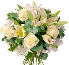ABC Flowers Fitzroy Melbourne is your local florist to Frances Perry House deliver B006 West Melbourne White roses and white oriental lilies melbourne wide free delivery melbourne inner suburbs