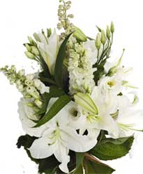 ABC Flowers St. Vincent's hospital fitzroy melbourne deliver B011 white delphiniums lisies oriental lilies bouquet 7 days a week melbourne wide