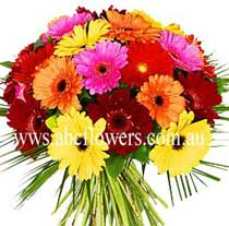 ABC Flowers St. Vincent's Hospital Fitzroy Melbourne deliver B014 Gerberas Bouquet 7 days a week melbourne wide free Delivery Melbourne inner suburbs