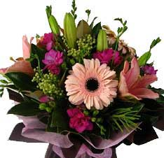 B018 Windsor - Lilies, gerberas, berries and other seasonal pink flowers bouquet free delivery to melbourne inner suburbs
