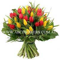 ABC Flowers st. vincent's hospital fitzroy melbourne deliver tulips melbourne wide free delivery melbourne inner suburbs 7 days a week
