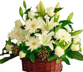 ABC Flowers st. vincent's hospital fitzroy melbourne deliver ba003 cottage style flower arrangement in basket melbourne wide free delivery melbourne inner suburbs