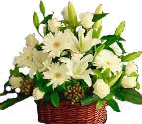 ABC Flowers st. vincent's hospital fitzroy melbourne deliver ba003 cottage style flower arrangement in basket melbourne wide free delivery melbourne inner suburbs