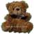 ABC Flowers Deliver Teddy Bear Melbourne Wide 7 days a week