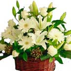 ABC Flowers st. vincent's hospital fitzroy melbourne deliver flowers in basket melbourne wide
