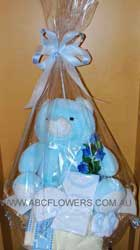 ABC Flowers st. vincent's hospital fitzroy melbourne deliver h004 new born gift pack in wash basket melbourne wide free delivery melbourne inner suburbs