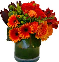 ABC Flowers St. Vincent's Hospital Fitzroy Melbourne Deliver V002 Vase arrangement gerberas roses berry melbourne wide free delivery all melbourne inner suburbs