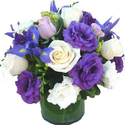 ABC Flowers st.vincent's hospital fitzroy melbourne delivery v006 virgin roses lisis freesia in a vase melbourne wid delivery 7 days a week free delivery melbourne inner suburbs