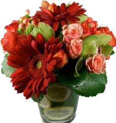 ABC Flowers st. vincent's hospital fitzroy melbourne deliver v007 michael roses gerberas orchids and berries in vase melbourne wide 7 days a week free delivery melbourne inner suburbs
