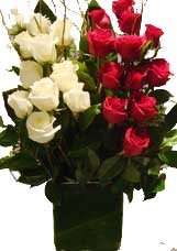 ABC Flowers st. vincent's hospital fitzroy melbourne deliver v008 eve long stems white and pink roses in vase melbourne wide 7 days a week free delivery melbourne inner suburbs