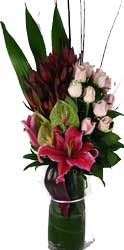 ABC Flowers st. vincent's hospital fitzroy melbourne deliver v014 amelia roses lilie anthuriums in a tall vase melbourne wide free delivery melbourne inner suburbs