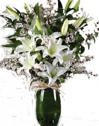 ABC Flowers st. vincent's hospital fitzroy melbourne deliver v019 lynn a white flowers arrangement in tall vase melbourne wide free delivery melbourne inner suburbs 7 days a week