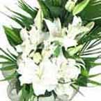 ABC Flowers st. vincent's hospital fitzroy melbourne deliver sympathy flowers melbourne wide