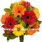 ABC Flowers st. vincent's hospital fitzroy melbourne deliver thank you thanks giving flowers melbourne wide