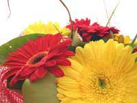 St. Vincent's Hospital Florist B001 seasonal bunch only deliver to St. Vincent's Hospitals Melbourne only
